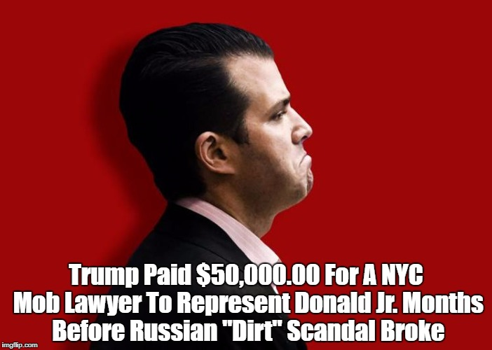 "Trump Paid $50,000.00 For A NYC Mob Lawyer To Represent Donald Jr. Months Before Russian ""Dirt"" Scandal Broke 