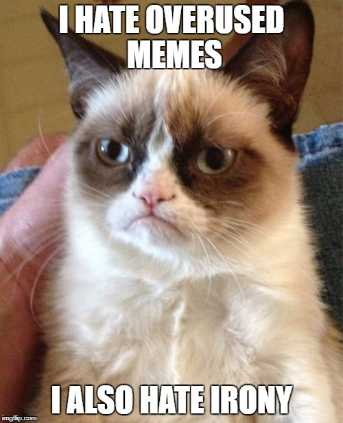 Grumpy Cat Meme | I HATE OVERUSED MEMES I ALSO HATE IRONY | image tagged in memes,grumpy cat | made w/ Imgflip meme maker