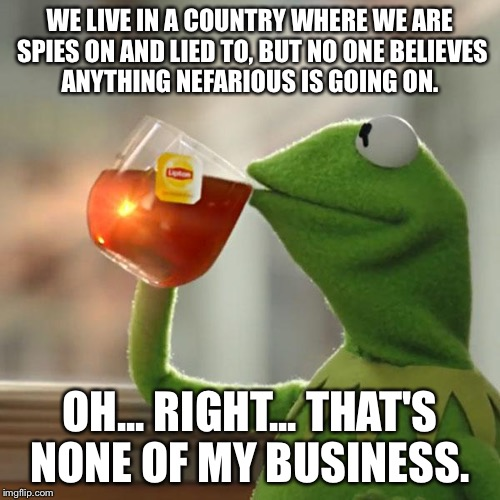 But Thats None Of My Business Meme | WE LIVE IN A COUNTRY WHERE WE ARE SPIES ON AND LIED TO, BUT NO ONE BELIEVES ANYTHING NEFARIOUS IS GOING ON. OH... RIGHT... THAT'S NONE OF MY | image tagged in memes,but thats none of my business,kermit the frog | made w/ Imgflip meme maker