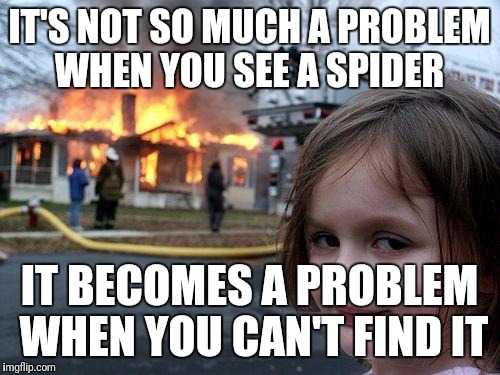 Disaster Girl Meme | IT'S NOT SO MUCH A PROBLEM WHEN YOU SEE A SPIDER IT BECOMES A PROBLEM WHEN YOU CAN'T FIND IT | image tagged in memes,disaster girl | made w/ Imgflip meme maker