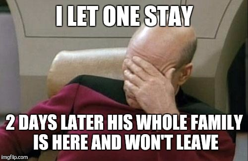 Captain Picard Facepalm Meme | I LET ONE STAY 2 DAYS LATER HIS WHOLE FAMILY IS HERE AND WON'T LEAVE | image tagged in memes,captain picard facepalm | made w/ Imgflip meme maker