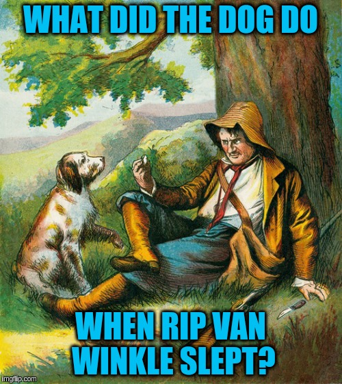 WHAT DID THE DOG DO WHEN RIP VAN WINKLE SLEPT? | made w/ Imgflip meme maker
