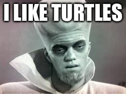 And now the alien ambassador will deliver the first message to Earth from across the universe. | I LIKE TURTLES | image tagged in kanabit alien monster,aliens meme,memes,do you really meme iit,lets all be good eggs and shit,so yeah | made w/ Imgflip meme maker