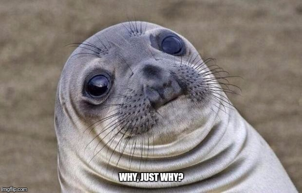 Awkward Moment Sealion Meme | WHY, JUST WHY? | image tagged in memes,awkward moment sealion | made w/ Imgflip meme maker