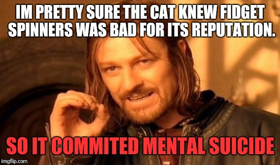 One Does Not Simply Meme | IM PRETTY SURE THE CAT KNEW FIDGET SPINNERS WAS BAD FOR ITS REPUTATION. SO IT COMMITED MENTAL SUICIDE | image tagged in memes,one does not simply | made w/ Imgflip meme maker