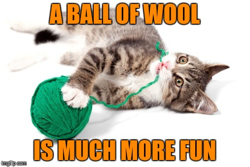 A BALL OF WOOL IS MUCH MORE FUN | made w/ Imgflip meme maker