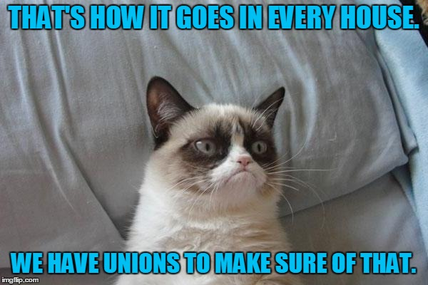 THAT'S HOW IT GOES IN EVERY HOUSE. WE HAVE UNIONS TO MAKE SURE OF THAT. | made w/ Imgflip meme maker