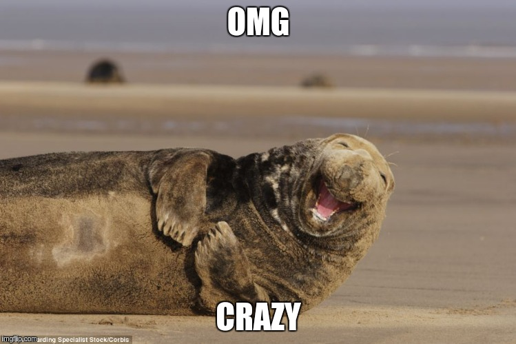 OMG CRAZY | made w/ Imgflip meme maker