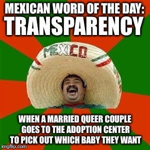 succesful mexican | MEXICAN WORD OF THE DAY: WHEN A MARRIED QUEER COUPLE GOES TO THE ADOPTION CENTER TO PICK OUT WHICH BABY THEY WANT TRANSPARENCY | image tagged in succesful mexican,memes,funny,mexican word of the day | made w/ Imgflip meme maker