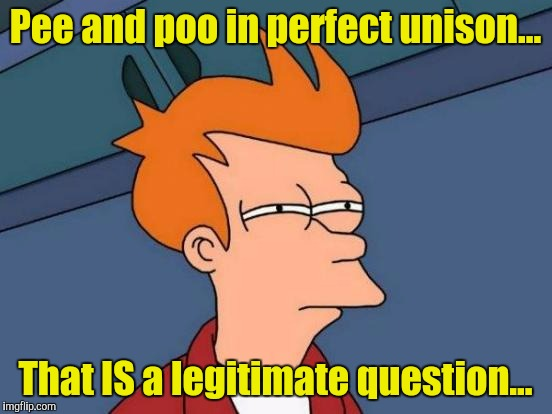 Futurama Fry Meme | Pee and poo in perfect unison... That IS a legitimate question... | image tagged in memes,futurama fry | made w/ Imgflip meme maker