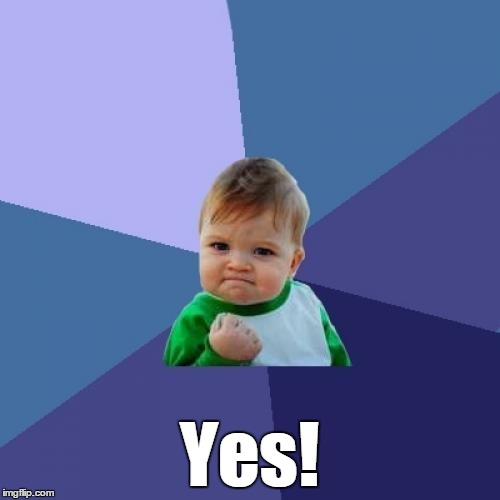 Success Kid Meme | Yes! | image tagged in memes,success kid | made w/ Imgflip meme maker