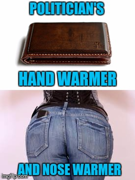 POLITICIAN'S HAND WARMER AND NOSE WARMER | made w/ Imgflip meme maker