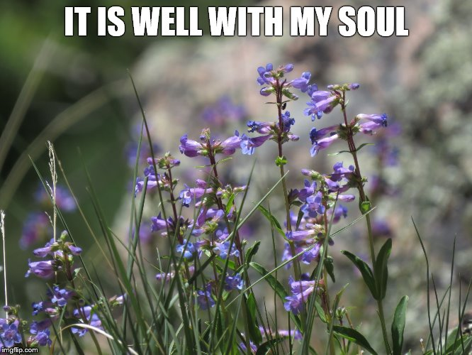IT IS WELL WITH MY SOUL | image tagged in it is well | made w/ Imgflip meme maker