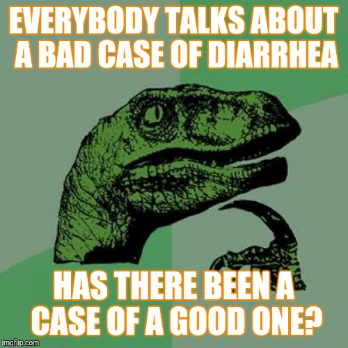 Philosoraptor | EVERYBODY TALKS ABOUT A BAD CASE OF DIARRHEA HAS THERE BEEN A CASE OF A GOOD ONE? | image tagged in memes,philosoraptor | made w/ Imgflip meme maker