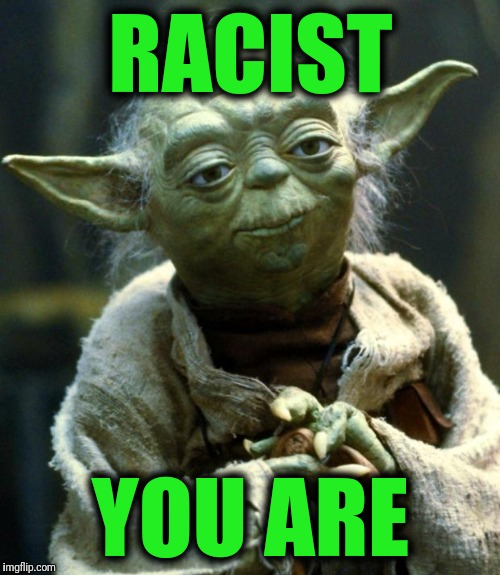 Star Wars Yoda Meme | RACIST YOU ARE | image tagged in memes,star wars yoda | made w/ Imgflip meme maker