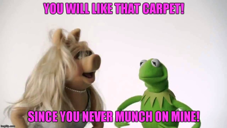 YOU WILL LIKE THAT CARPET! SINCE YOU NEVER MUNCH ON MINE! | made w/ Imgflip meme maker