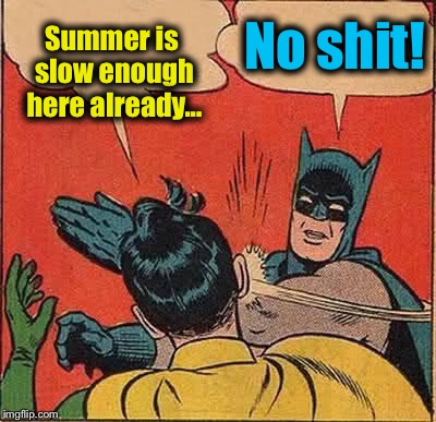 Batman Slapping Robin Meme | Summer is slow enough here already... No shit! | image tagged in memes,batman slapping robin | made w/ Imgflip meme maker