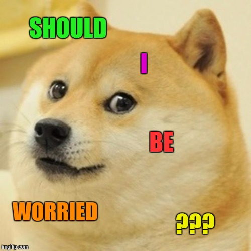 Doge Meme | SHOULD I BE WORRIED ??? | image tagged in memes,doge | made w/ Imgflip meme maker