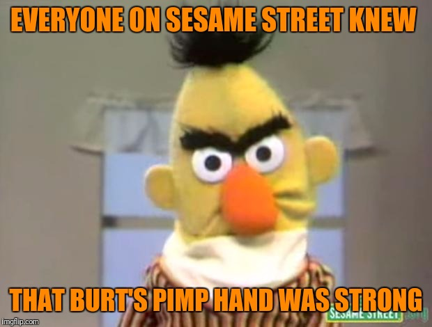 Sesame Street - Angry Bert | EVERYONE ON SESAME STREET KNEW THAT BURT'S PIMP HAND WAS STRONG | image tagged in sesame street - angry bert | made w/ Imgflip meme maker