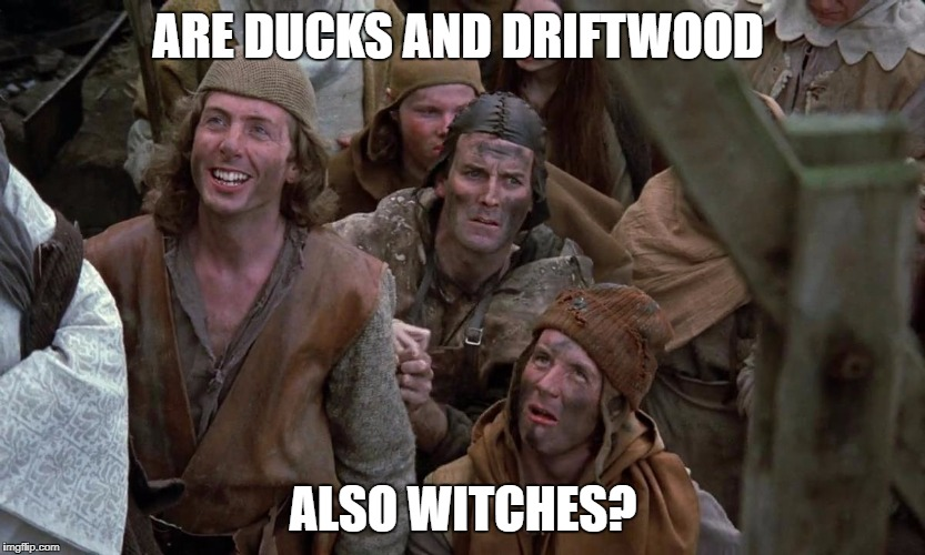 ARE DUCKS AND DRIFTWOOD ALSO WITCHES? | image tagged in monty python villagers | made w/ Imgflip meme maker