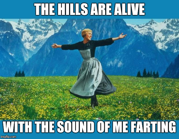 the sound of music happiness | THE HILLS ARE ALIVE WITH THE SOUND OF ME FARTING | image tagged in the sound of music happiness | made w/ Imgflip meme maker
