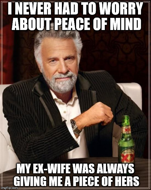 The Most Interesting Man In The World Meme | I NEVER HAD TO WORRY ABOUT PEACE OF MIND MY EX-WIFE WAS ALWAYS GIVING ME A PIECE OF HERS | image tagged in memes,the most interesting man in the world | made w/ Imgflip meme maker