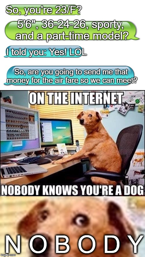 "Home business expert level: BOSS. | So, you're 23/F? So, are you going to send me that money for the air fare so we can meet? 5'6"", 36-24-26, sporty, and a part-time model? I t 