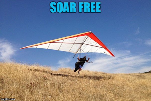 SOAR FREE | made w/ Imgflip meme maker