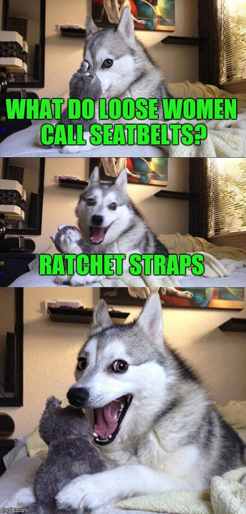 Bad Pun Dog Meme | WHAT DO LOOSE WOMEN CALL SEATBELTS? RATCHET STRAPS | image tagged in memes,bad pun dog | made w/ Imgflip meme maker