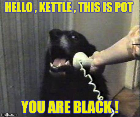 This happens 'round these parts a lot , too Huckleberries | HELLO , KETTLE , THIS IS POT YOU ARE BLACK ! | image tagged in it's for you,overly accusatory donald sutherland,dog,phone | made w/ Imgflip meme maker