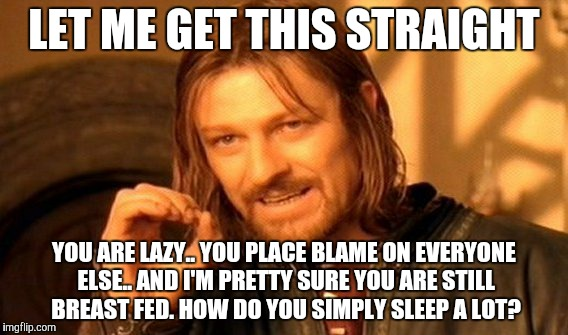 One Does Not Simply Meme | LET ME GET THIS STRAIGHT YOU ARE LAZY.. YOU PLACE BLAME ON EVERYONE ELSE.. AND I'M PRETTY SURE YOU ARE STILL BREAST FED. HOW DO YOU SIMPLY S | image tagged in memes,one does not simply | made w/ Imgflip meme maker