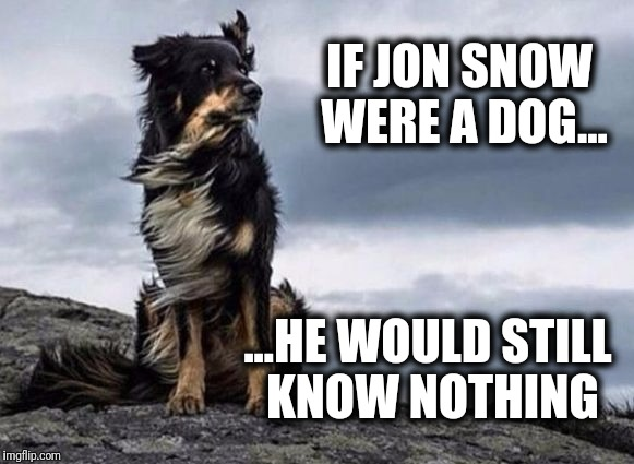 GOT, if Jon Snow was a dog... | IF JON SNOW WERE A DOG... ...HE WOULD STILL KNOW NOTHING | image tagged in epic dog,game of thrones | made w/ Imgflip meme maker