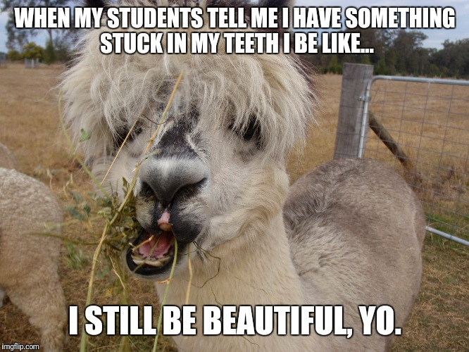 WHEN MY STUDENTS TELL ME I HAVE SOMETHING STUCK IN MY TEETH I BE LIKE... I STILL BE BEAUTIFUL, YO. | image tagged in teacher | made w/ Imgflip meme maker