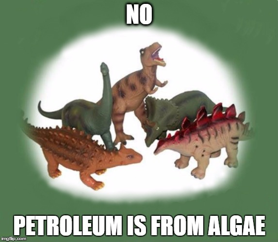 NO PETROLEUM IS FROM ALGAE | image tagged in dinos | made w/ Imgflip meme maker