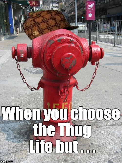 fire hydrant number 1550 | When you choose the Thug Life but . . . | image tagged in fire hydrant number 1550,scumbag | made w/ Imgflip meme maker