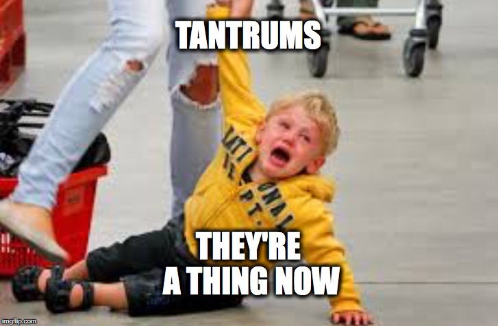 Tantrum store | TANTRUMS THEY'RE A THING NOW | image tagged in tantrum store | made w/ Imgflip meme maker