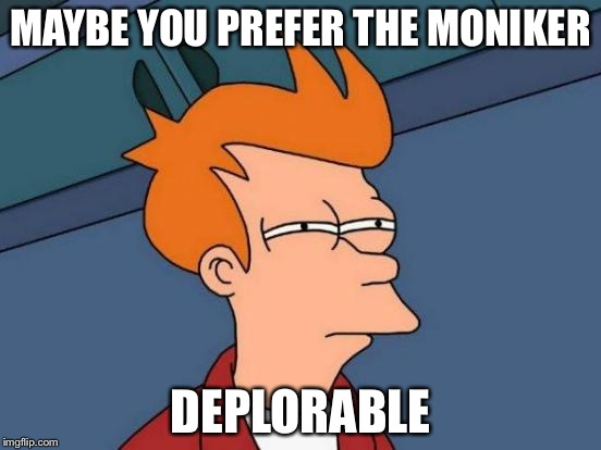Futurama Fry Meme | MAYBE YOU PREFER THE MONIKER DEPLORABLE | image tagged in memes,futurama fry | made w/ Imgflip meme maker