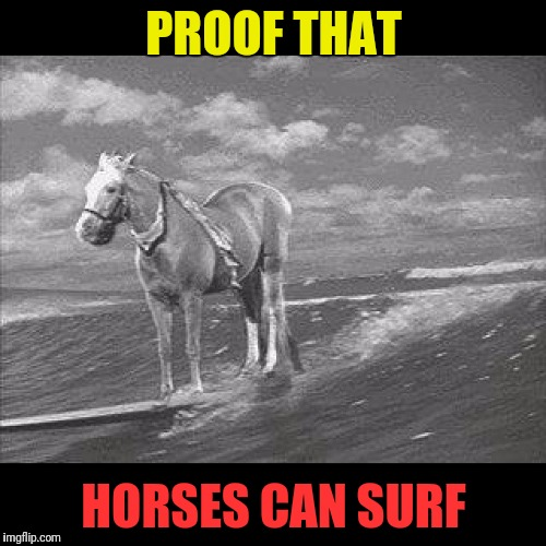 PROOF THAT HORSES CAN SURF | made w/ Imgflip meme maker