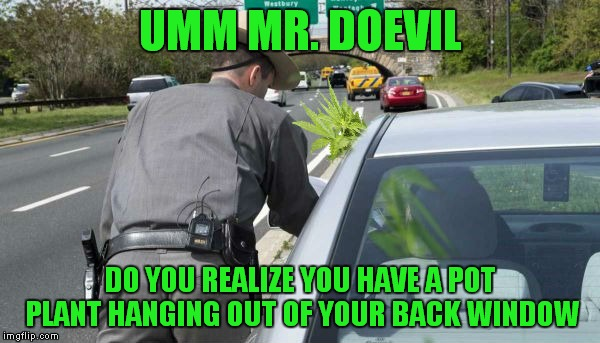 UMM MR. DOEVIL DO YOU REALIZE YOU HAVE A POT PLANT HANGING OUT OF YOUR BACK WINDOW | made w/ Imgflip meme maker