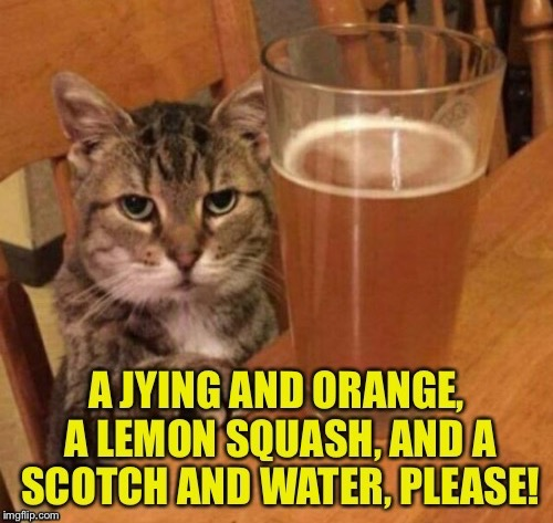 Angry Drunk Cat | A JYING AND ORANGE, A LEMON SQUASH, AND A SCOTCH AND WATER, PLEASE! | image tagged in memes,angry drunk cat | made w/ Imgflip meme maker