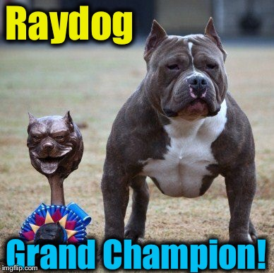 Raydog Grand Champion! | made w/ Imgflip meme maker