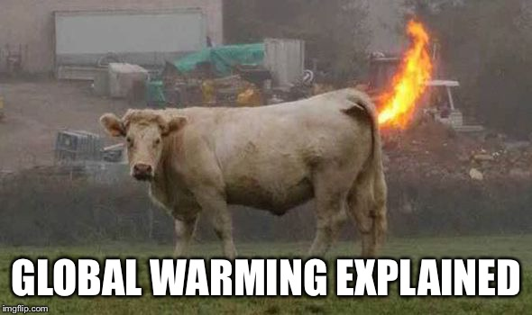 GLOBAL WARMING EXPLAINED | made w/ Imgflip meme maker