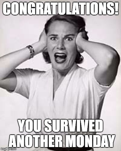 Survived another monday | CONGRATULATIONS! YOU SURVIVED ANOTHER MONDAY | image tagged in monday,survival,weekend over | made w/ Imgflip meme maker