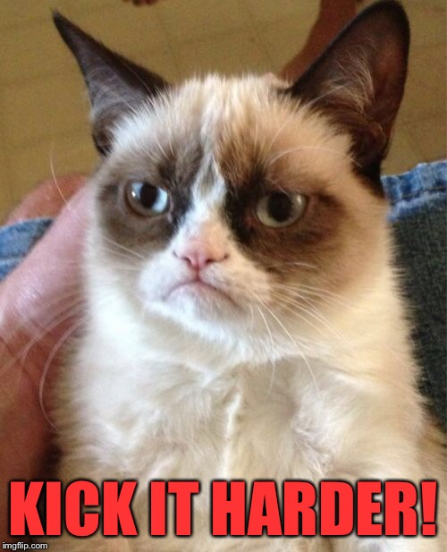 Grumpy Cat Meme | KICK IT HARDER! | image tagged in memes,grumpy cat | made w/ Imgflip meme maker
