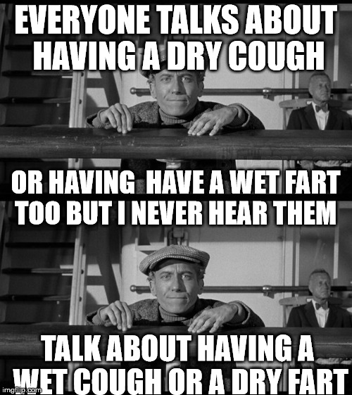 EVERYONE TALKS ABOUT HAVING A DRY COUGH TALK ABOUT HAVING A WET COUGH OR A DRY FART OR HAVING  HAVE A WET FART TOO BUT I NEVER HEAR THEM | made w/ Imgflip meme maker