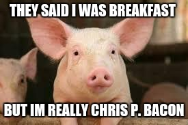 pig | THEY SAID I WAS BREAKFAST BUT IM REALLY CHRIS P. BACON | image tagged in pig | made w/ Imgflip meme maker