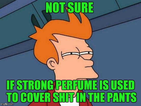 Futurama Fry Meme | NOT SURE IF STRONG PERFUME IS USED TO COVER SHIT IN THE PANTS | image tagged in memes,futurama fry | made w/ Imgflip meme maker