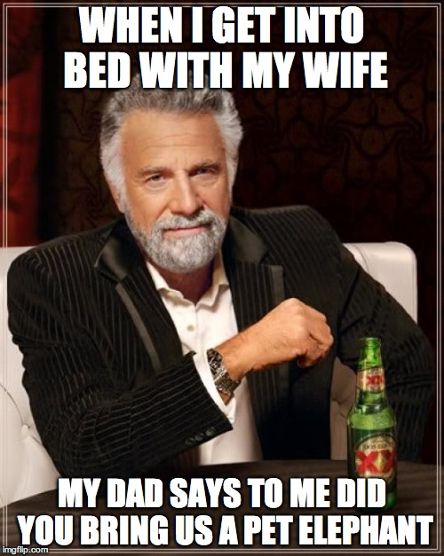 The Most Interesting Man In The World Meme | WHEN I GET INTO BED WITH MY WIFE MY DAD SAYS TO ME DID YOU BRING US A PET ELEPHANT | image tagged in memes,the most interesting man in the world | made w/ Imgflip meme maker