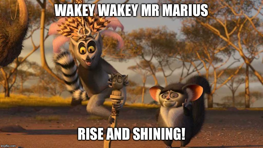 WAKEY WAKEY MR MARIUS RISE AND SHINING! | image tagged in king julian | made w/ Imgflip meme maker