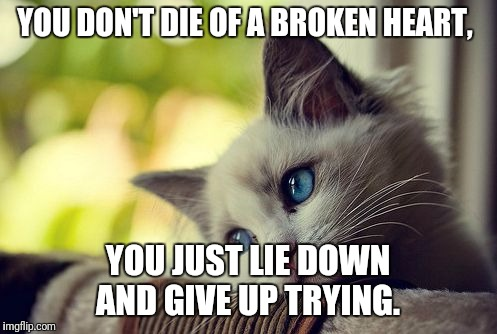 First World Problems Cat |  YOU DON'T DIE OF A BROKEN HEART, YOU JUST LIE DOWN AND GIVE UP TRYING. | image tagged in memes,first world problems cat | made w/ Imgflip meme maker